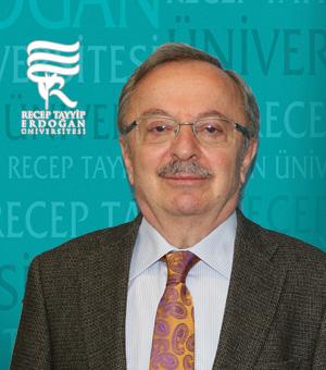 Prof. Dr. İLYAS KARSLI