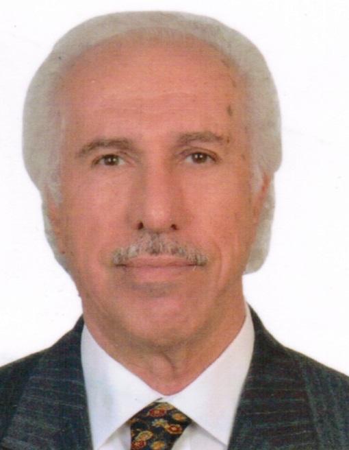 Prof. Dr. MEHMET MASUM ŞİMŞEK