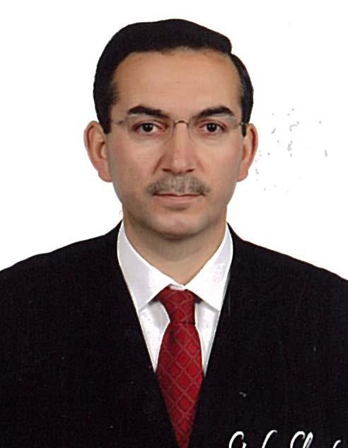 Prof. Dr. ALİ AKDOĞAN